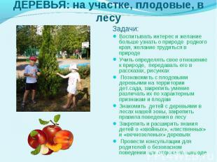 Задачи: Задачи: Воспитывать интерес и желание больше узнать о природе&nbsp