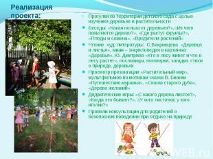 Прогулки по территории детского сада с целью изучения деревьев и растительности
