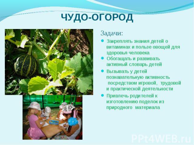 Задачи: Задачи: Закреплять знания детей о витаминах и пользе овощей для здоровья человека Обогащать и развивать активный словарь детей Вызывать у детей познавательную активность посредством игровой,трудовой и практической деятельно…