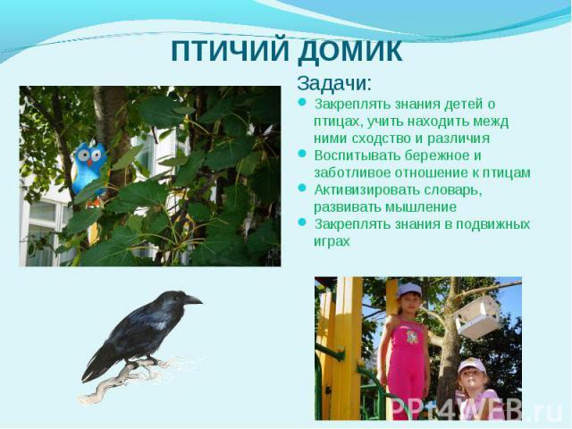 Задачи: Задачи: Закреплять знания детей о птицах, учить находить межд нимисходство и различия Воспитывать бережное и заботливое отношение к птицам Активизировать словарь, развивать мышление Закреплять знания в подвижных играх  &nbs…