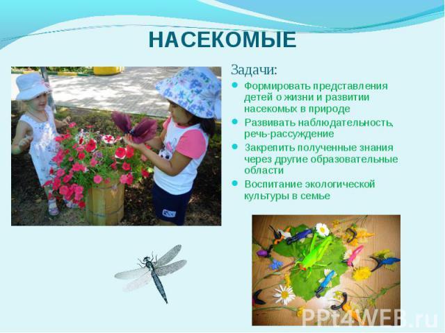 Задачи: Задачи: Формировать представления детей о жизни и развитии насекомых в природе Развивать наблюдательность, речь-рассуждение Закрепить полученные знания через другие образовательные области Воспитание экологической культуры в семье &nbs…