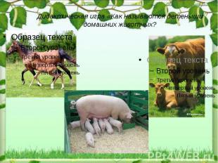 Дидактическая игра «Как называются детеныши домашних животных?