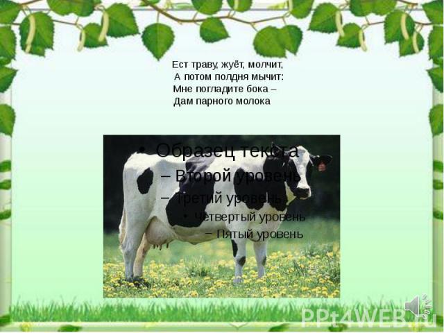 Ест траву, жуёт, молчит, А потом полдня мычит: Мне погладите бока – Дам парного молока