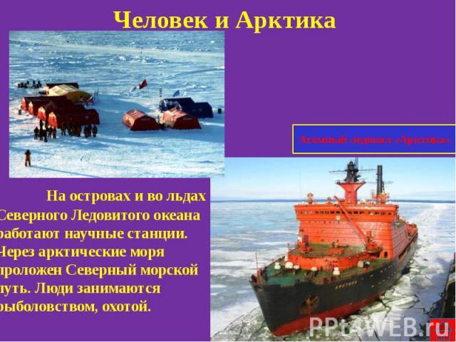 Человек и Арктика На островах и во льдах Северного Ледовитого океана работают научные станции. Через арктические моря проложен Северный морской путь. Люди занимаются рыболовством, охотой.