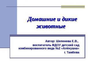 Домашние и дикие животные Автор: Шепенева Е.В., воспитатель МДОУ детский сад ком