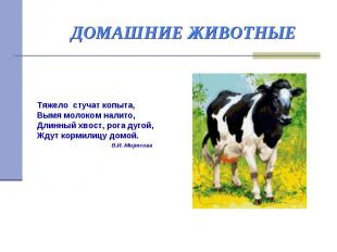 ДОМАШНИЕ ЖИВОТНЫЕ Тяжело стучат копыта, Вымя молоком налито, Длинный хвост, рога