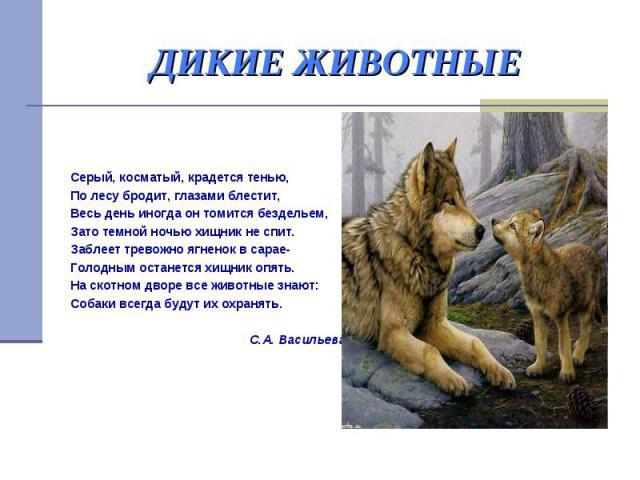 ДИКИЕ ЖИВОТНЫЕ Серый, косматый, крадется тенью, По лесу бродит, глазами блестит, Весь день иногда он томится бездельем, Зато темной ночью хищник не спит. Заблеет тревожно ягненок в сарае- Голодным останется хищник опять. На скотном дворе все животны…