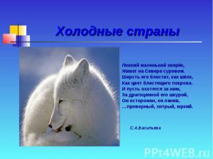 Холодные страны Ловкий маленький зверёк, Живет на Севере суровом. Шерсть его бле