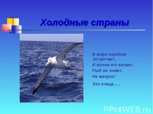 Холодные страны В море корабли встречает, И волна его качает, Рыб он ловит, Не м