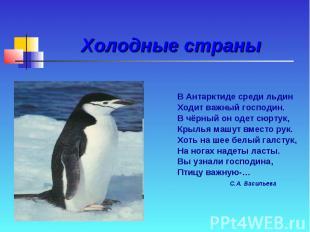 Холодные страны В Антарктиде среди льдин Ходит важный господин. В чёрный он одет