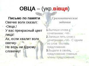 ОВЦА – (укр.вівця) Письмо по памяти Овечке волк сказал: Овца,! У вас прекрасный