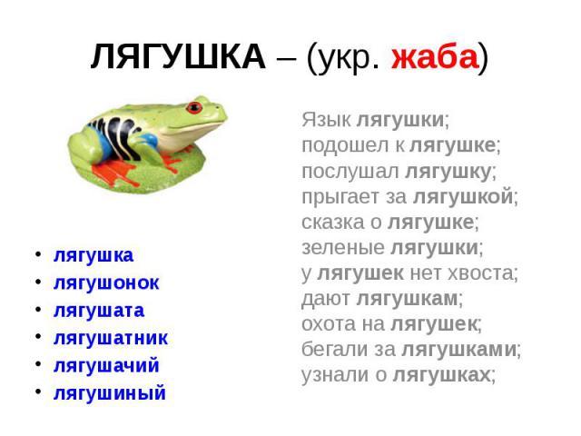 ЛЯГУШКА – (укр. жаба) лягушка лягушонок лягушата лягушатник лягушачий лягушиный