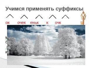 Учимся применять суффиксы ок очек еньк к очк Снег укутал деревья. Дуб в мохнатой