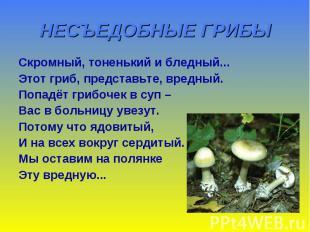 НЕСЪЕДОБНЫЕ ГРИБЫ Скромный, тоненький и бледный... Этот гриб, представьте, вредн