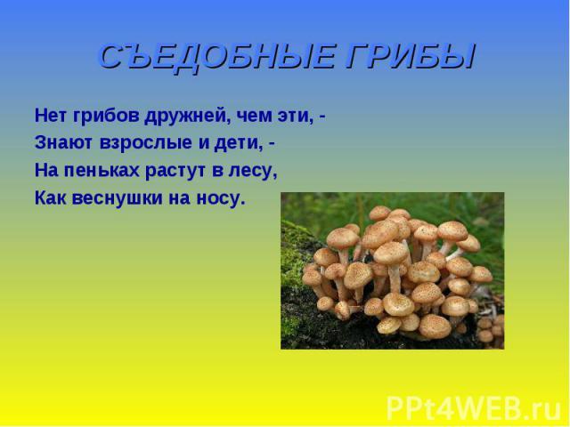 СЪЕДОБНЫЕ ГРИБЫ Нет грибов дружней, чем эти, - Знают взрослые и дети, - На пеньках растут в лесу, Как веснушки на носу.