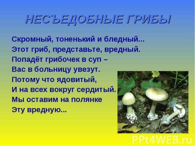 НЕСЪЕДОБНЫЕ ГРИБЫ Скромный, тоненький и бледный... Этот гриб, представьте, вредный. Попадёт грибочек в суп – Вас в больницу увезут. Потому что ядовитый, И на всех вокруг сердитый. Мы оставим на полянке Эту вредную...