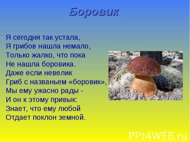 Боровик Я сегодня так устала, Я грибов нашла немало, Только жалко, что пока Не нашла боровика. Даже если невелик Гриб с названьем «боровик», Мы ему ужасно рады - И он к этому привык: Знает, что ему любой Отдает поклон земной.