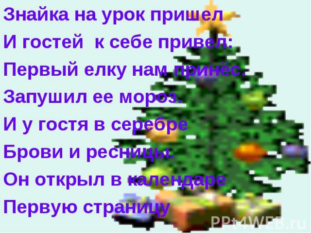 Знайка на урок пришел Знайка на урок пришел И гостей к себе привел: Первый елку нам принёс. Запушил ее мороз. И у гостя в серебре Брови и ресницы. Он открыл в календаре Первую страницу