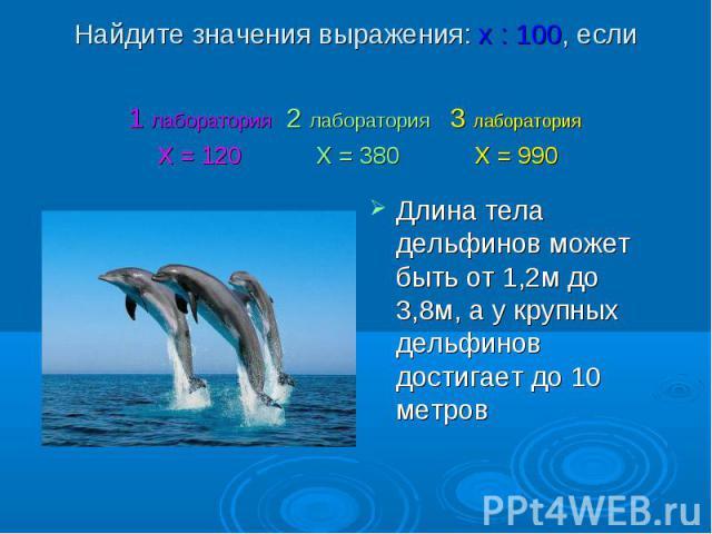 Длина тела дельфинов может быть от 1,2м до 3,8м, а у крупных дельфинов достигает до 10 метров Длина тела дельфинов может быть от 1,2м до 3,8м, а у крупных дельфинов достигает до 10 метров