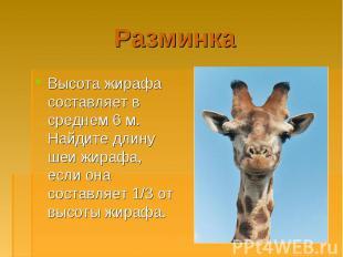 Высота жирафа составляет в среднем 6 м. Найдите длину шеи жирафа, если она соста