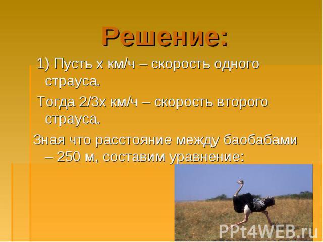 1) Пусть х км/ч – скорость одного страуса. 1) Пусть х км/ч – скорость одного страуса. Тогда 2/3х км/ч – скорость второго страуса. Зная что расстояние между баобабами – 250 м, составим уравнение: