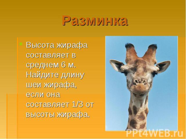 Высота жирафа составляет в среднем 6 м. Найдите длину шеи жирафа, если она составляет 1/3 от высоты жирафа. Высота жирафа составляет в среднем 6 м. Найдите длину шеи жирафа, если она составляет 1/3 от высоты жирафа.