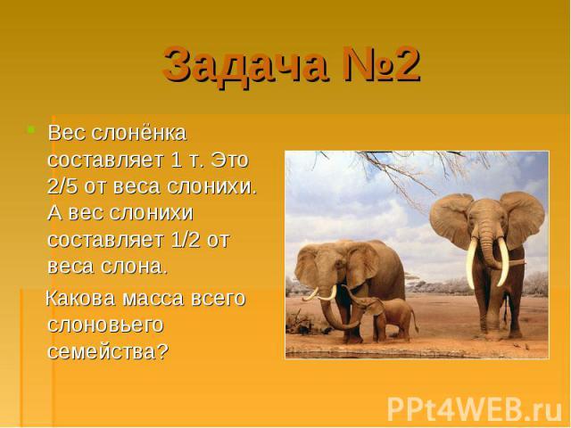 Вес слонёнка составляет 1 т. Это 2/5 от веса слонихи. А вес слонихи составляет 1/2 от веса слона. Вес слонёнка составляет 1 т. Это 2/5 от веса слонихи. А вес слонихи составляет 1/2 от веса слона. Какова масса всего слоновьего семейства?
