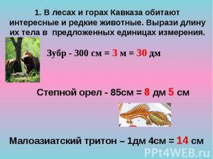 Степной орел - 85см = 8 дм 5 см Степной орел - 85см = 8 дм 5 см