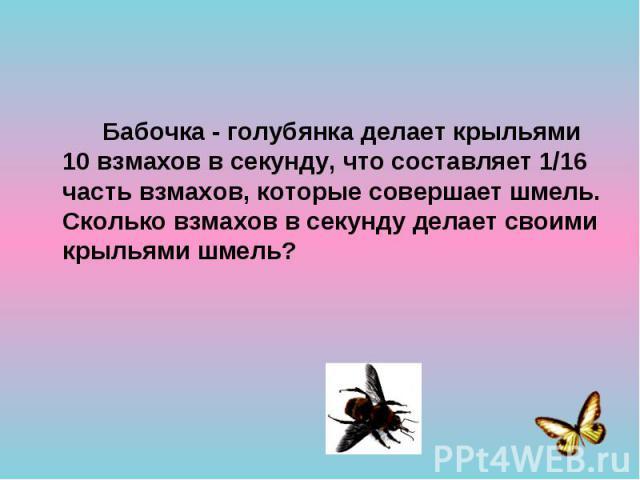 Бабочка - голубянка делает крыльями 10 взмахов в секунду, что составляет 1/16 часть взмахов, которые совершает шмель. Сколько взмахов в секунду делает своими крыльями шмель? Бабочка - голубянка делает крыльями 10 взмахов в секунду, что составляет 1/…
