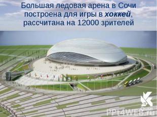 Большая ледовая арена в Сочи построена для игры в хоккей, рассчитана на 12000 зр