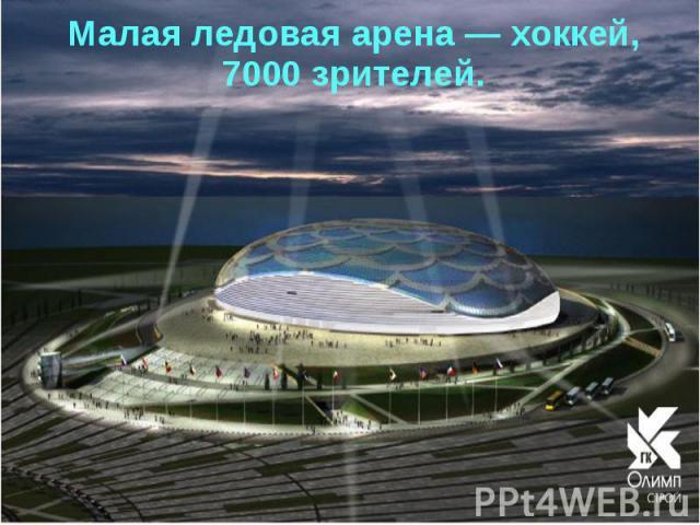 Малая ледовая арена— хоккей, 7000 зрителей.