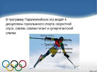 В программу Паралимпийских игр входят 4 В программу Паралимпийских игр входят 4