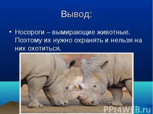 Носороги – вымирающие животные. Поэтому их нужно охранять и нельзя на них охотит
