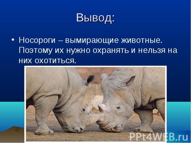 Носороги – вымирающие животные. Поэтому их нужно охранять и нельзя на них охотиться. Носороги – вымирающие животные. Поэтому их нужно охранять и нельзя на них охотиться.