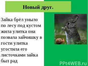 Зайка брёл уныло по лесу. Под кустом жила улитка. Она позвала зайчишку в гости.