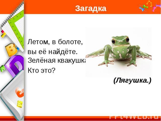 Загадка Летом, в болоте, вы её найдёте. Зелёная квакушка. Кто это? (Лягушка.)