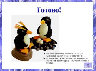 Прикрепите готового пингвина на камушки (шарики из чёрного и серого пластилина).