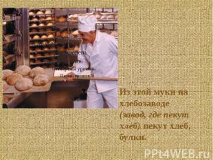 Из этой муки на хлебозаводе (завод, где пекут хлеб) пекут хлеб, булки. Из этой м