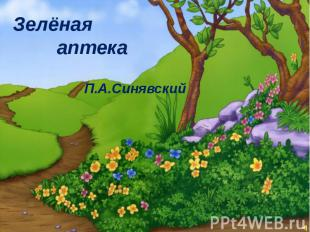Зелёная аптека П.А.Синявский