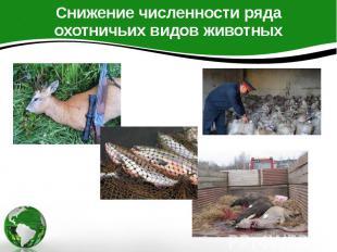 Снижение численности ряда охотничьих видов животных