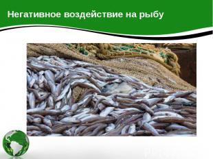 Негативное воздействие на рыбу