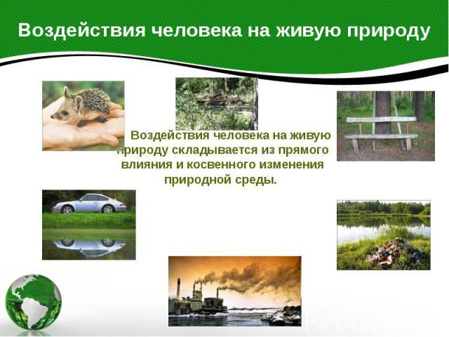 Воздействия человека на живую природу Воздействия человека на живую природу складывается из прямого влияния и косвенного изменения природной среды.