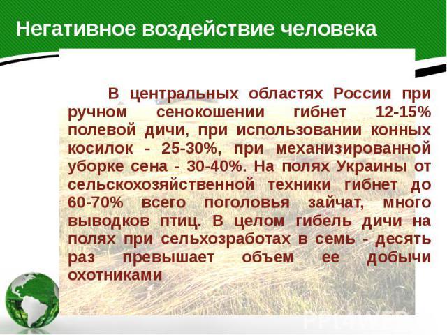 Негативное воздействие человека В центральных областях России при ручном сенокошении гибнет 12-15% полевой дичи, при использовании конных косилок - 25-30%, при механизированной уборке сена - 30-40%. На полях Украины от сельскохозяйственной техники г…