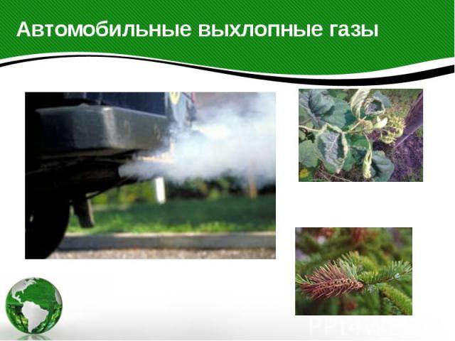 Автомобильные выхлопные газы