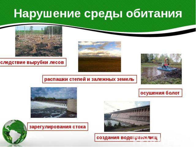 Нарушение среды обитания