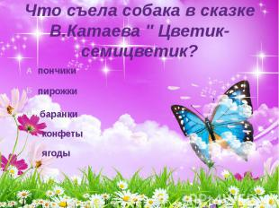 """Что съела собака в сказке В.Катаева """" Цветик-семицветик? ягоды"""
