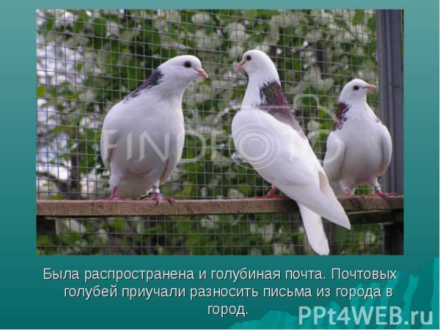 Была распространена и голубиная почта. Почтовых голубей приучали разносить письма из города в город. Была распространена и голубиная почта. Почтовых голубей приучали разносить письма из города в город.