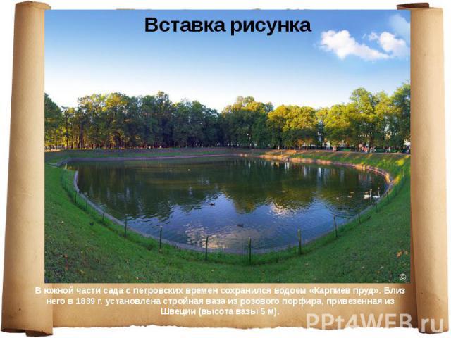 В южной части сада с петровских времен сохранился водоем «Карпиев пруд». Близ него в 1839 г. установлена стройная ваза из розового порфира, привезенная из Швеции (высота вазы 5 м). В южной части сада с петровских времен сохранился водоем «Карпиев пр…