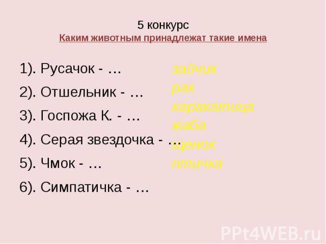 5 конкурс Каким животным принадлежат такие имена 1). Русачок - … 2). Отшельник - … 3). Госпожа К. - … 4). Серая звездочка - … 5). Чмок - … 6). Симпатичка - …