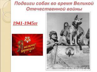 1941-1945гг 1941-1945гг